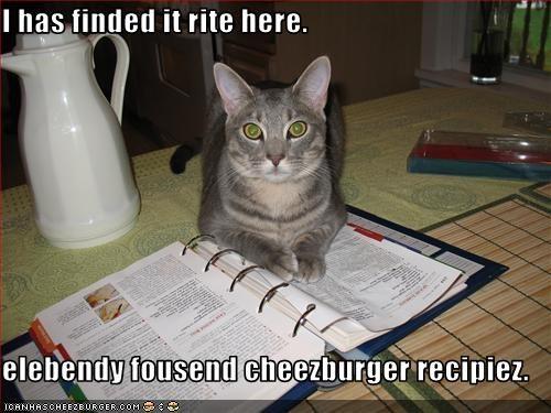 Cheezburger Image 3574538240