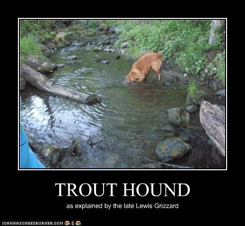 TROUT HOUND as explained by the late Lewis Grizzard