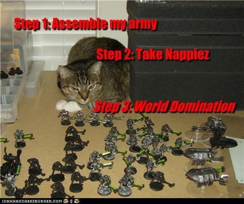 Step 1: Assemble my army Step 2: Take Nappiez Step 3: World Domination