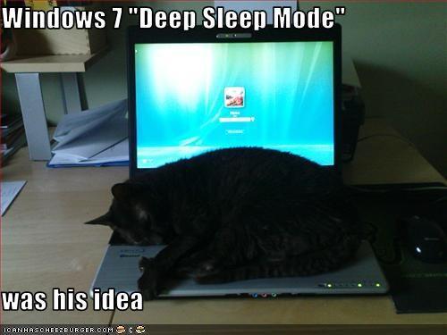 helping laptop nap sleeping - 3575392256