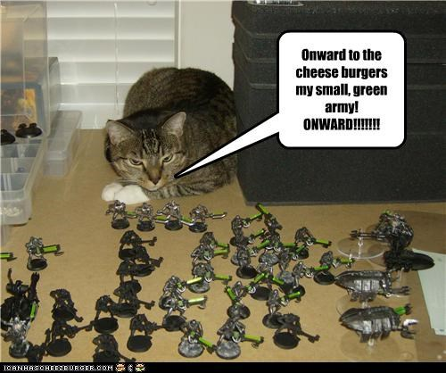 Cheezburger Image 3577850624