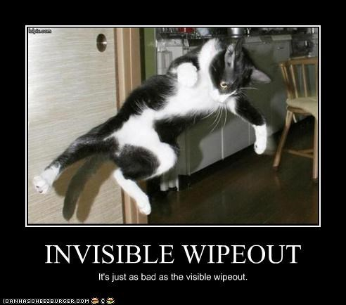 Invisible Wipeout Cheezburger Funny Memes Funny Pictures