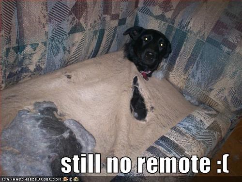 couch,holes,remote control,Sad,tear
