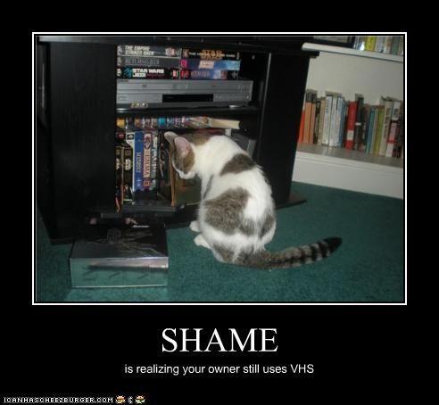 ashamed - 3582684416