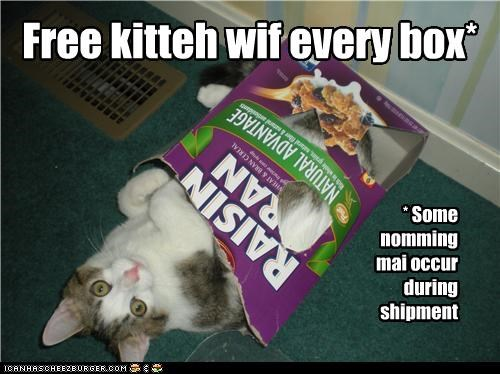 Free kitteh wif every box* * Some nomming mai occur during shipment