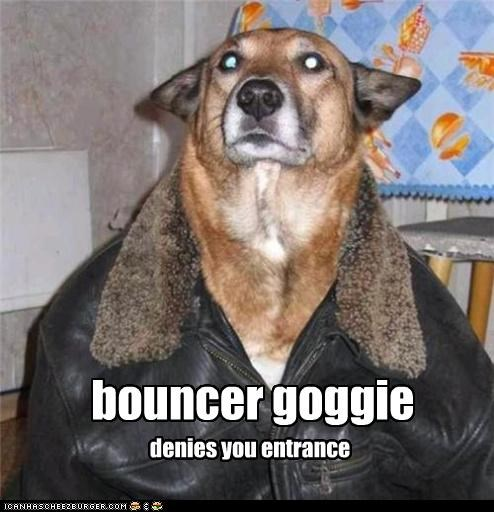 bouncer goggie denies you entrance