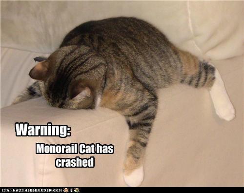 Warning: Monorail Cat has crashed