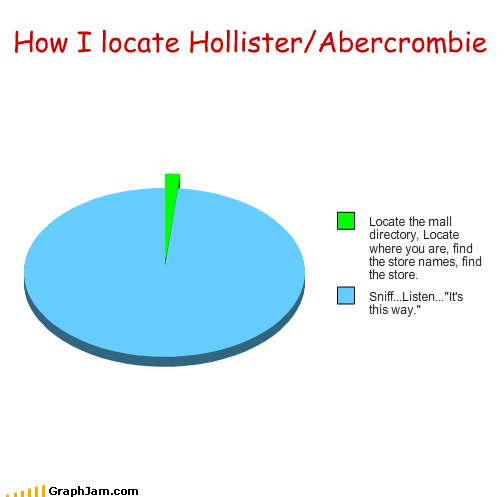 abercrombie and fitch annoying directory find hollister mall Music noise Pie Chart shopping smell stores