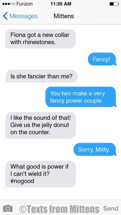 funny text messages from mittens the cat
