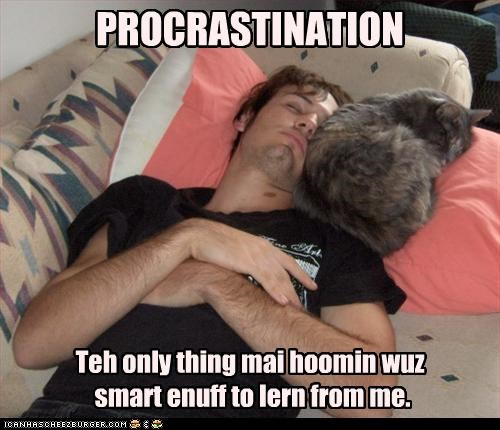 lazy nap procrastination - 3591808256