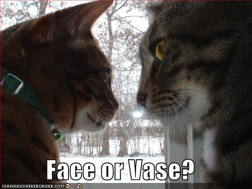 Face Or Vase Cheezburger Funny Memes Funny Pictures