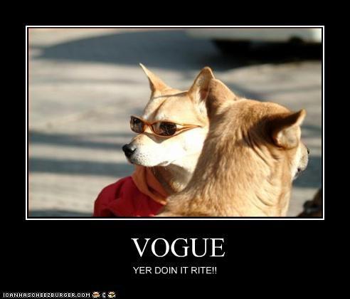 akita fashion outside sunglasses - 3593102080