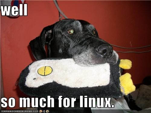 linux mixed breed penguin stuffed toy - 3593881088