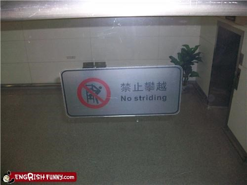 no,sign,striding,wtf