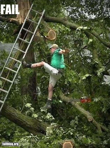 failboat fall ladder tree trimming - 3594566656