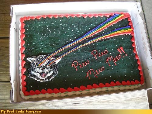 cake,Cats,laser cat,laser kitty,lasers,lolcats,pew pew,rainbow,Sweet Treats