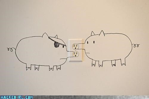 on the wall socket pigs - 3595383296