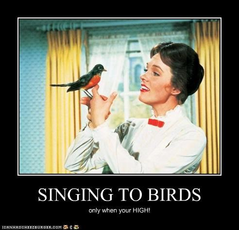 SINGING TO BIRDS only when your HIGH!