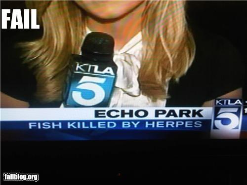 Death failboat fish herpes Probably bad News sad face - 3599114240