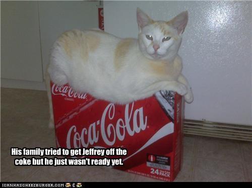 addicted bad cat box coke - 3599853312