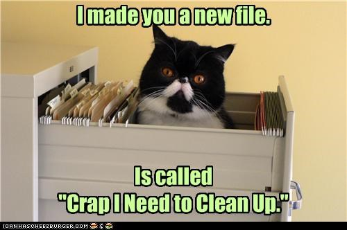 accident,caption,captioned,cat,clean up,creation,file,filing,filing cabinet,necessary,new,priority