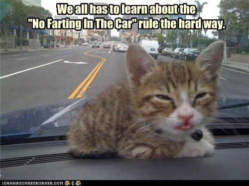 """We all has to learn about the """"No Farting In The Car"""" rule the hard way."""