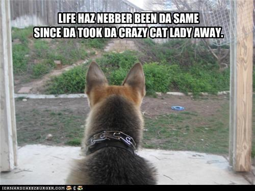 cat lady german shepherd porch Sad - 3602690560