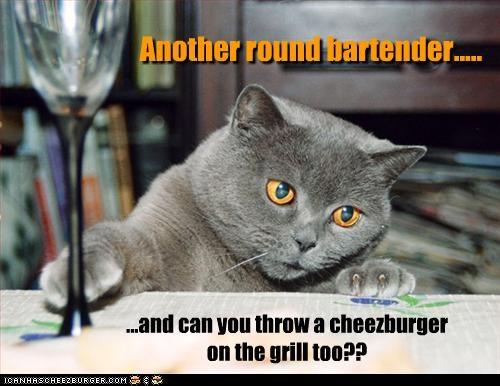 Cheezburger Image 3605123584