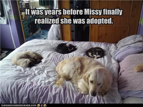 It was years before Missy finally realized she was adopted.