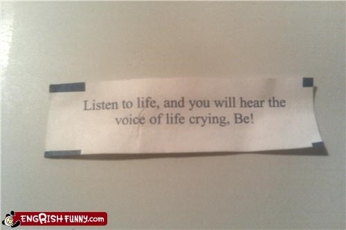 crying,fortune cookie,life,restaurant