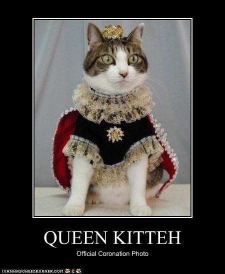 QUEEN KITTEH Official Coronation Photo