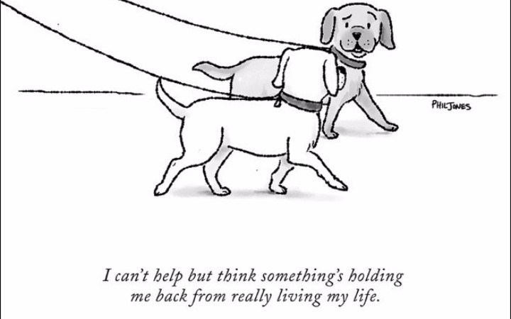 clever animal comics