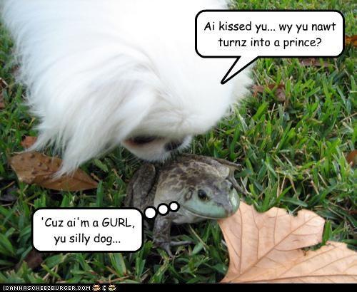 Ai kissed yu... wy yu nawt turnz into a prince? 'Cuz ai'm a GURL, yu silly dog...