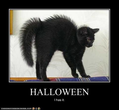 costume scary halloween i has it black cat - 3614524416