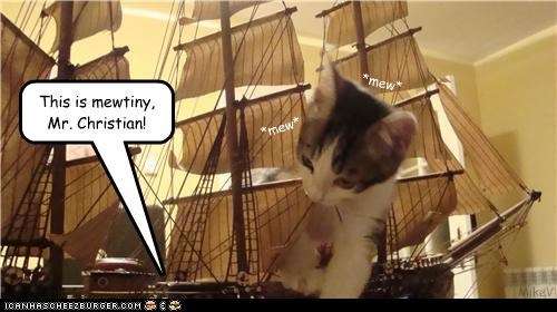 boat caption captioned cat do not want kitten mew mutiny neologism pun tiny toy - 3614625024