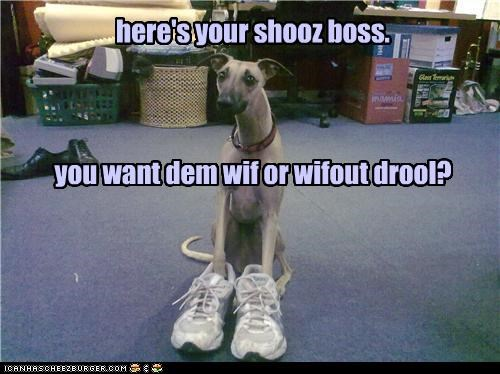 here's your shooz boss. you want dem wif or wifout drool?