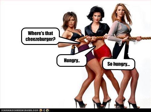 Cheezburger Image 3614915584