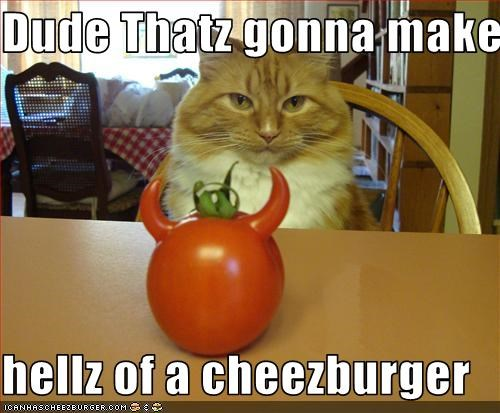 Cheezburger Image 3616526080