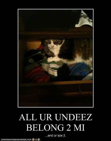 ALL UR UNDEEZ BELONG 2 MI ...and ur sox 2.