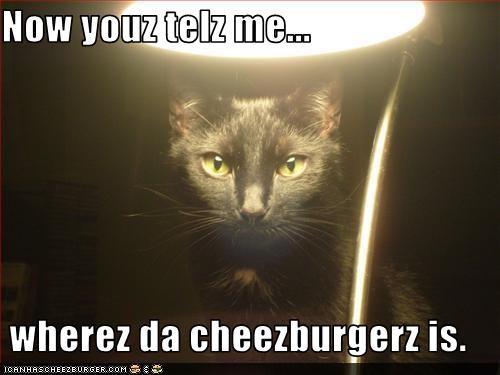 Cheezburger Image 3617781760