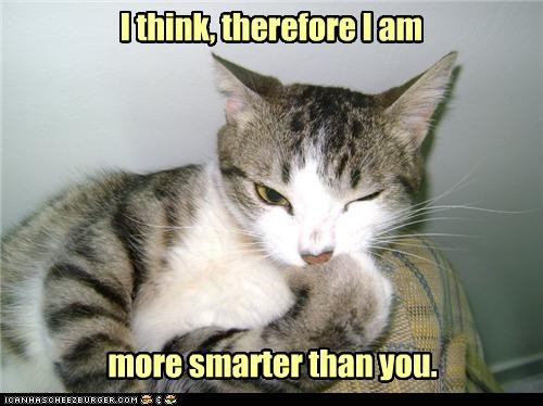I think, therefore I am more smarter than you.