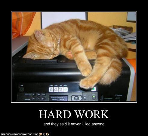 dead do not want work - 3617910528