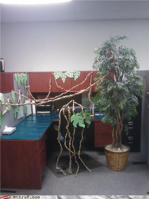 boredom clever corny creativity in the workplace cubicle cubicle boredom cubicle prank decoration ergonomics fake plants fake plastic trees jungle leaves mess oh no plastic trees prank radiohead roots sass screw you sculpture wasteful wiseass wrapping