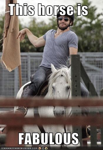celebrity-pictures-jake-gyllenhaal-horse jake gyllenhaal - 3618562048