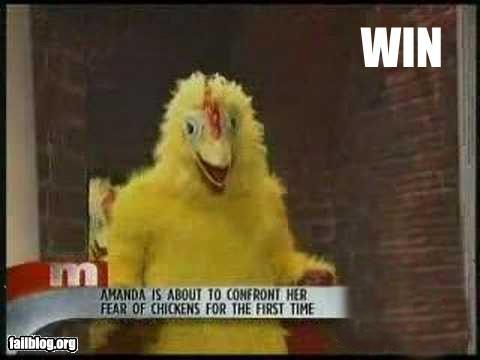 bad idea bird chicken failboat g rated phobia TV - 3619028480