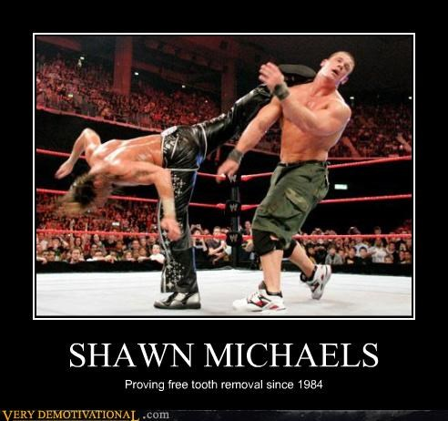 SHAWN MICHAELS Proving free tooth removal since 1984