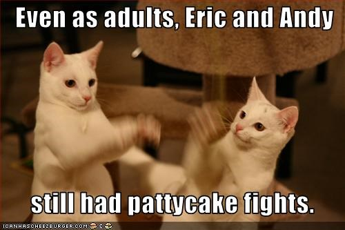 adults,caption,captioned,cat,Cats,childhood,fight,fighting,fights,habits,pattycake,still