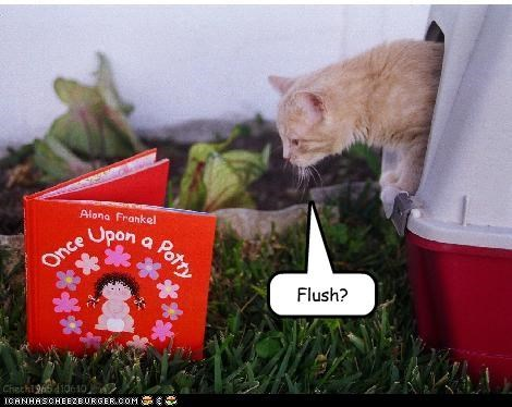 book caption captioned cat confused dont-understand flush instructions kitten litter box question - 3622311680