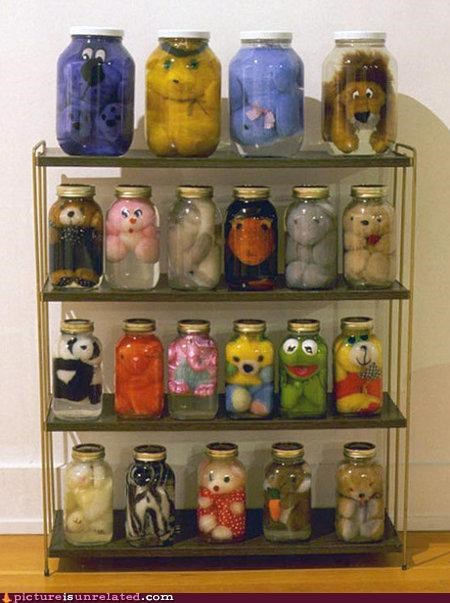 animals,collectors,jars,memories,stuffed animal,wtf