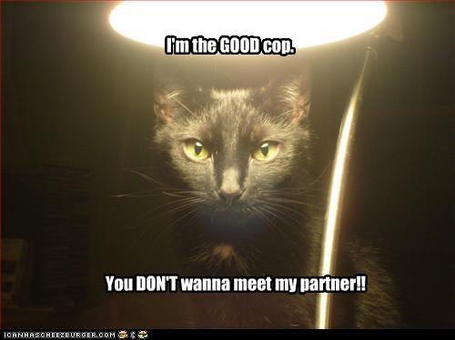 bad idea caption captioned cat cop dont good interrogation light meet partner